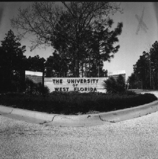 The History of UWF